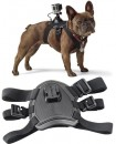 Pro Mounts GoPro Dog Harness
